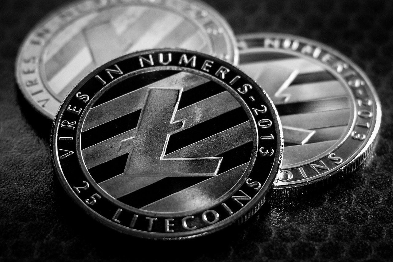 Kryptowaluta Litecoin - informacje, dane, opis